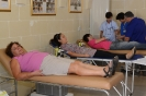 Blood Donation 2013