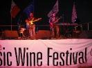 Wine Festival 2009